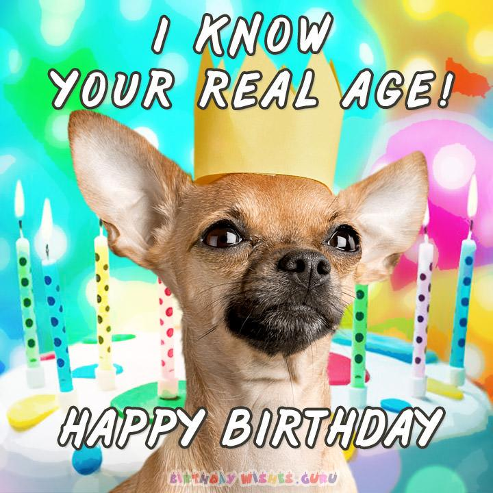 Funny birthday Card: I KNOW YOUR REAL AGE! HAPPY BIRTHDAY