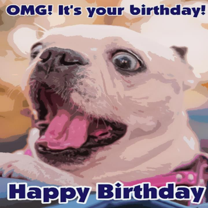 OGM! It's your birthday! Funny birthday Card