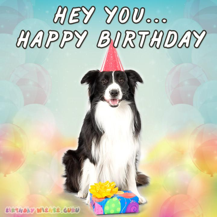 Funny birthday Card: HEY YOU… HAPPY BIRTHDAY